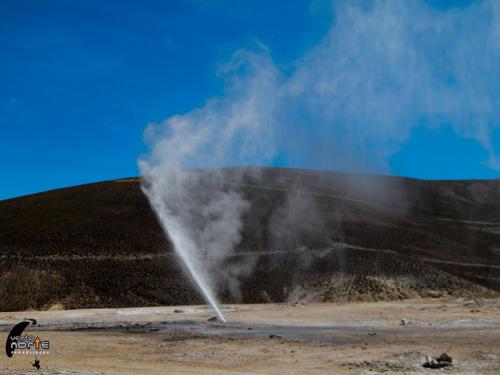 enquelga geysere